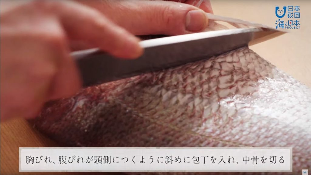 "A scene from the video ""How to prepare Japanese sea bream."" The Japanese subtitle says, ""Place the knife at an angle so that the pectoral fin and pelvic fin will stay attached to the head, and cut the backbone."""