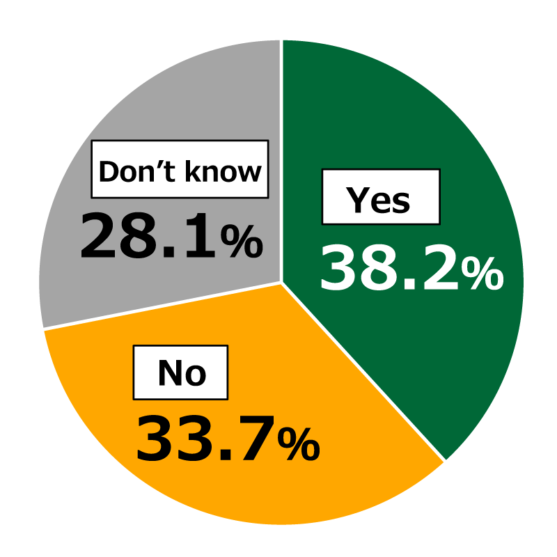 "Pie chart showing results from Awareness Survey of 18-Year-Olds: In response to the question, ""Do you feel that your reading skills are weak?"", 38.2% of respondents replied ""Yes,"" 33.7% replied ""No,"" and 28.1% replied ""Don't know."""